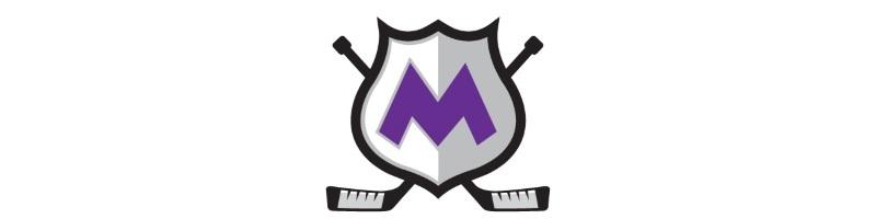 Minto Skating Centre/ Minto Adult Hockey league